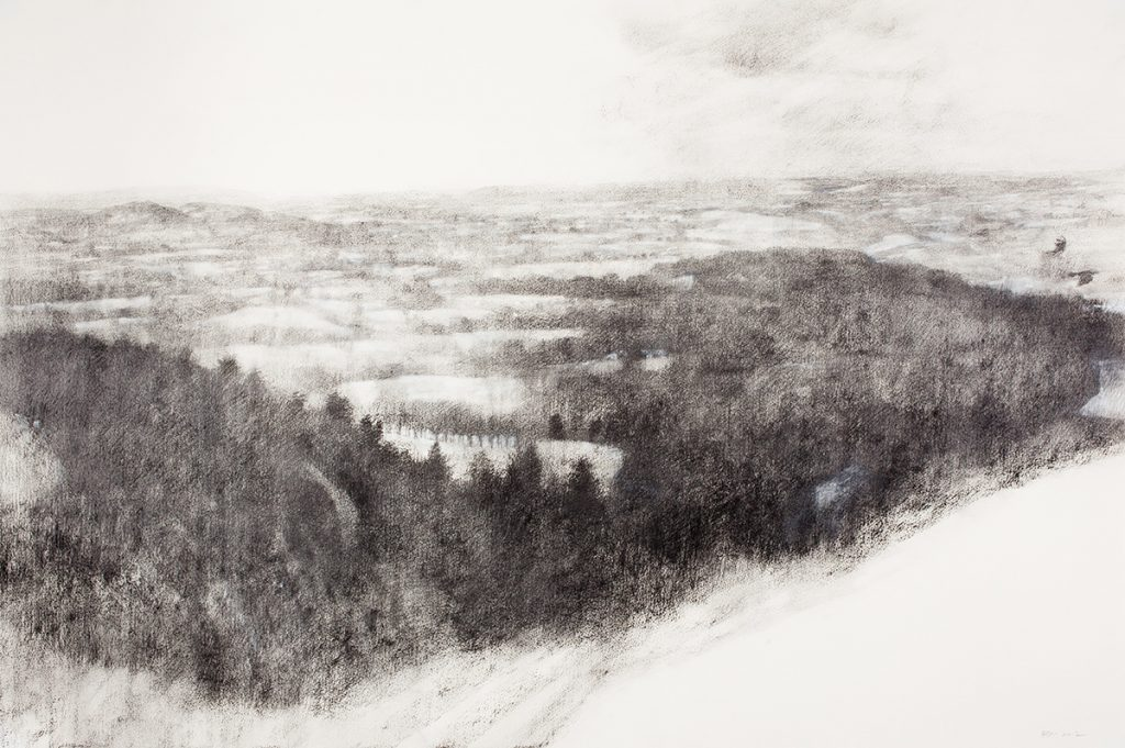 Snowy Woods (2012)