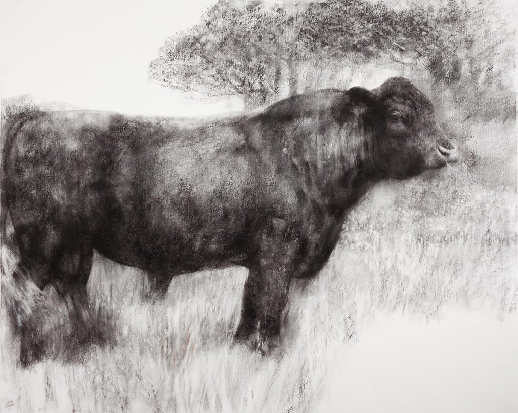 Bull in a Flowering Meadow (2010)
