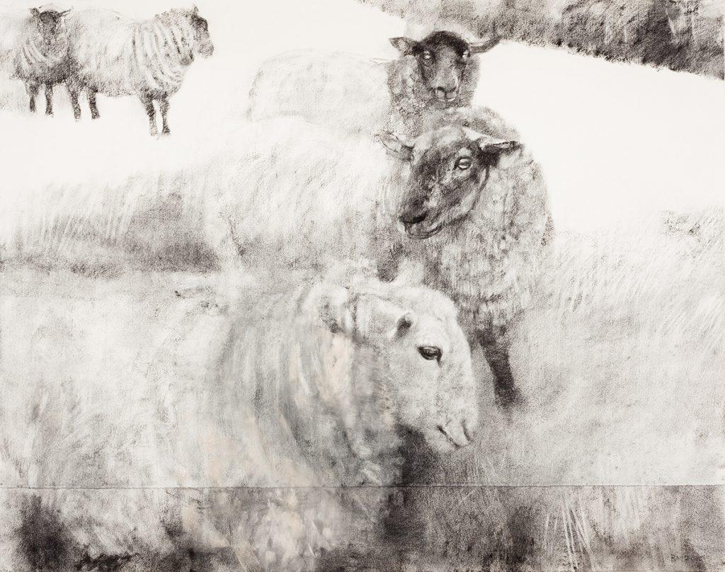 Ewes (2013)