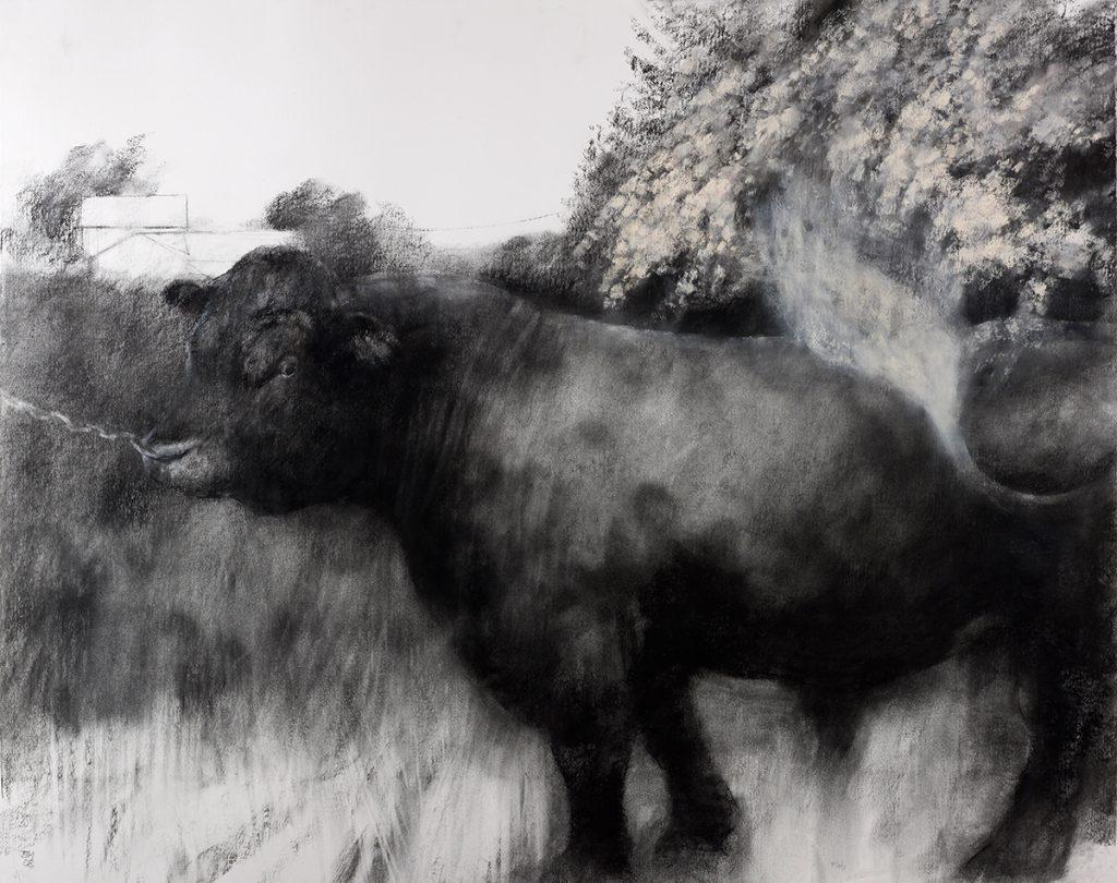 The May Bull (2009)