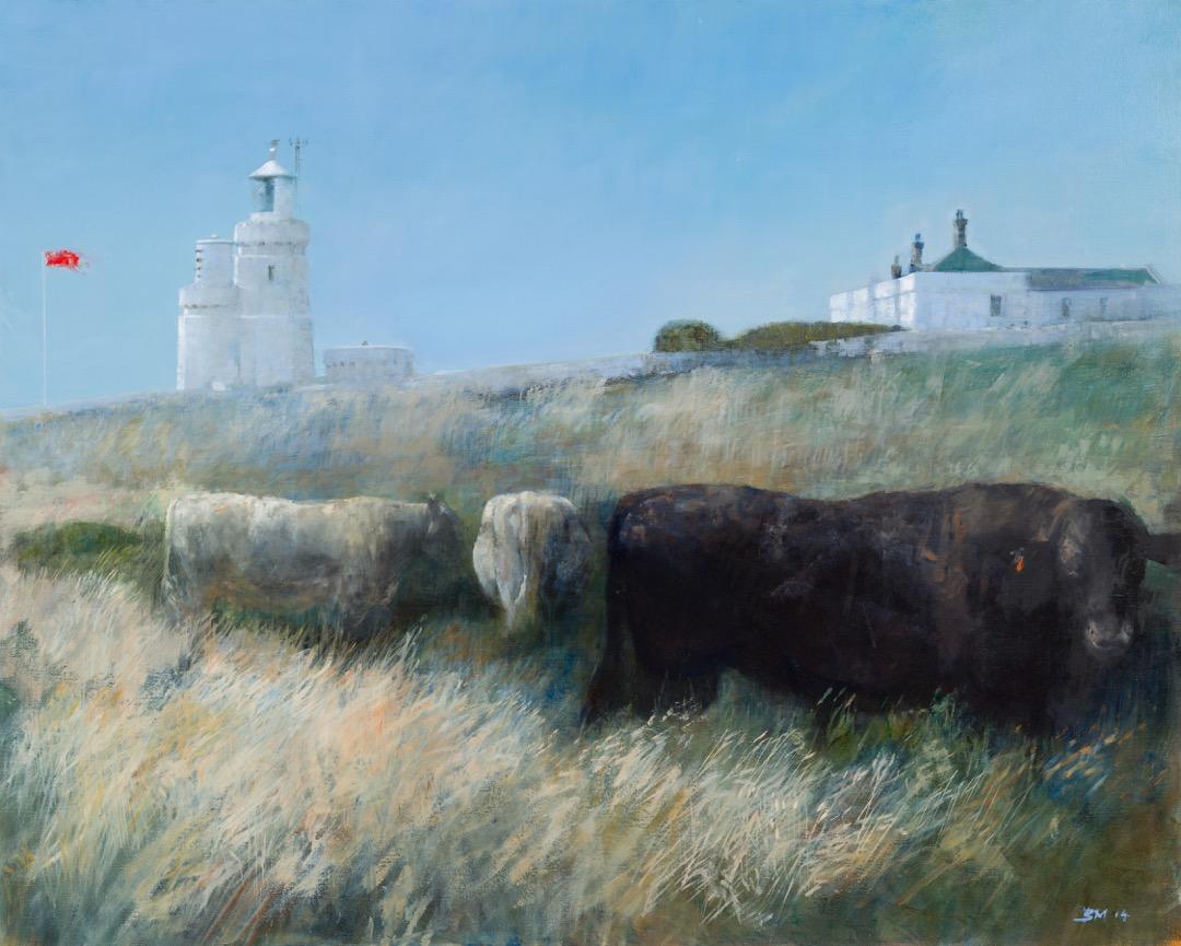 Summer Cattle (2014)