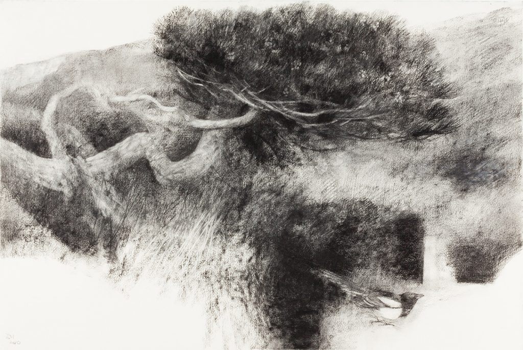 Tree and Magpie (2011)